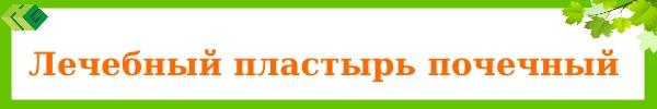 lechebniy_pochechniy